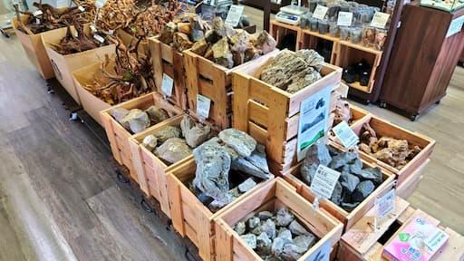 レイアウト用の石各種